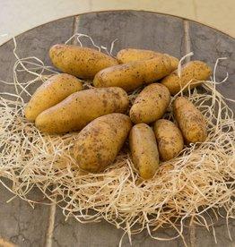 Potatoes Fine de ratte (per 100 gram)