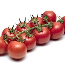 Tomato mini grape (per bunch)