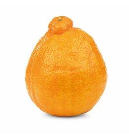 Appelsienen-Mineola (per stuk)