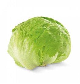 Iceberg lettuce (per piece)