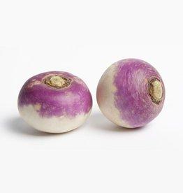 Turnip white (per bunch)