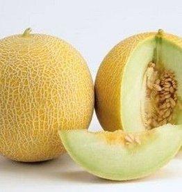 Meloen Galia (per stuk)