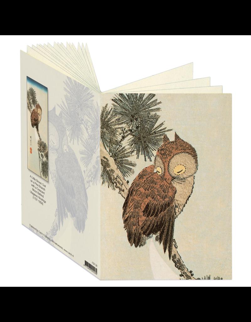 Little Brown Owl Journal CB28