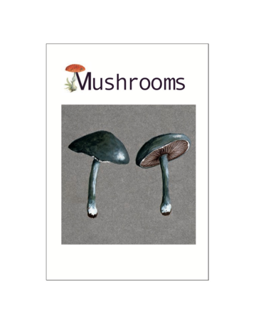 Mushrooms Postcard Pack