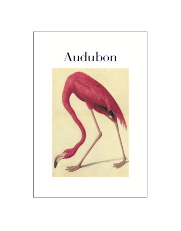 Audubon Postcard Pack PP050