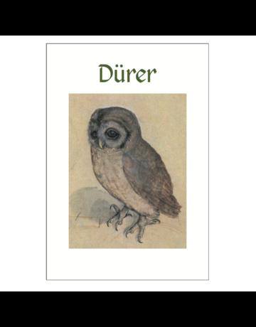 Dürer Postcard Pack PP025