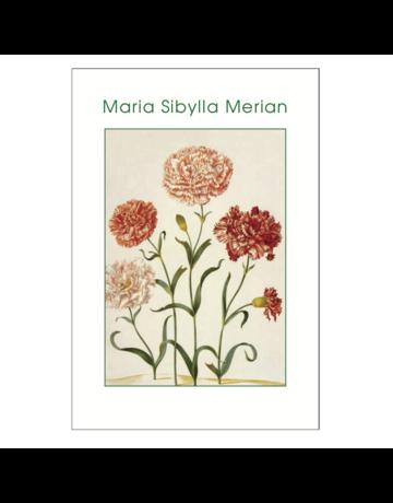 Maria Sibylla Merian Postcard Pack