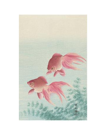 Songbird on Blossom PRINT