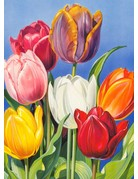 Tulips from Amsterdam Magnet