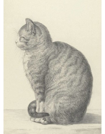Cat Drawing 1815 Magnet