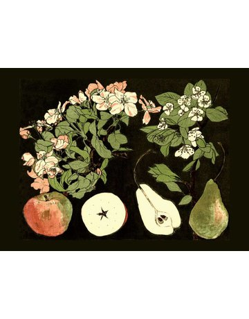 Apples and Pears Magnet