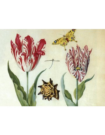 Two Tulips, a Shell and a Butterfly Magnet
