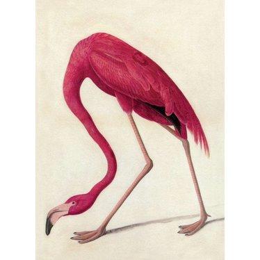 Pink Flamingo Magnet