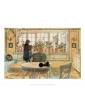 Catch Publishing Carl Larsson, The Flower Window