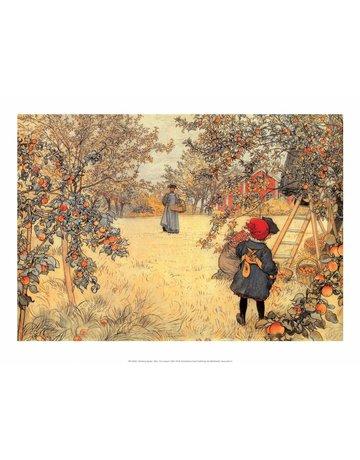 Catch Publishing Carl Larsson, Gathering Apples, 1904