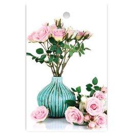Cosy Blanco rozen