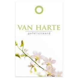 """Basic"" Fleur Van harte"