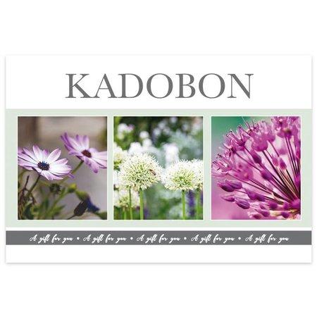 Fortuna Kadobonnen - Purple Green Inflore