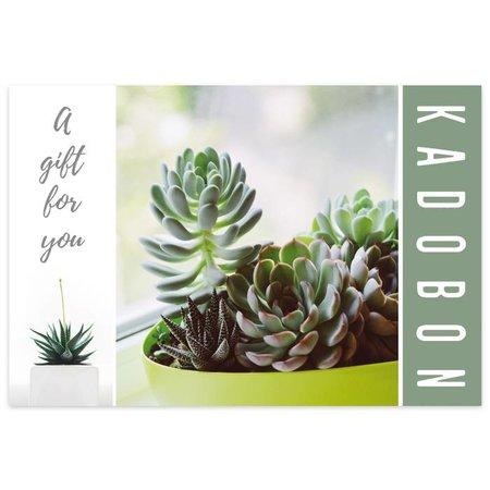 Fortuna Kadobonnen - Urban Succulent