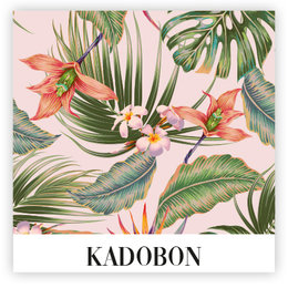 Present Kadobon