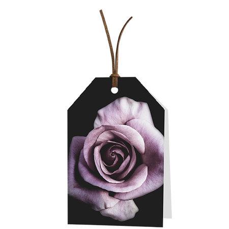 Wenskaarten Golden Age - Blanco: lila roos