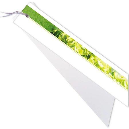 Emotions Emotions kleine ribbon - hortensia - Blanco