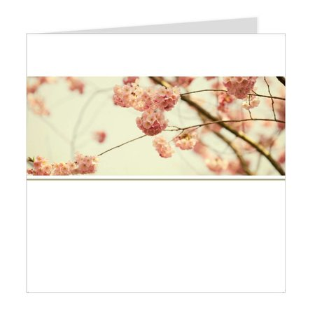 Emotions Emotions Quatro - Cherry blossom - Blanco