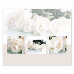 Romance Witte rozen