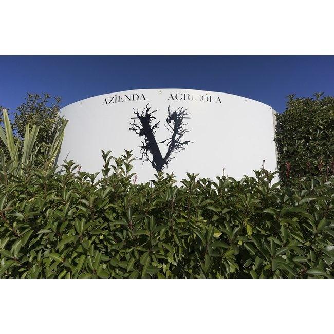 Azienda Agricola Venea