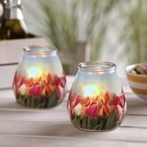 Twilight Tulpen, 6 Stück