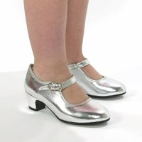 Prinsessenschoen zilver