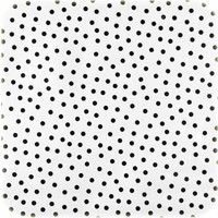Mexicaans Tafelzeil Wit met Zwarte Stippen op Rol-120 x 300 cm