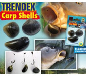 elite carp shells mossels