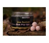 ccmoore live system pink pop-ups