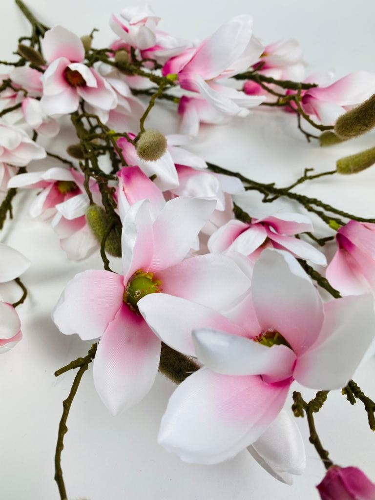 Kunst magnolia's