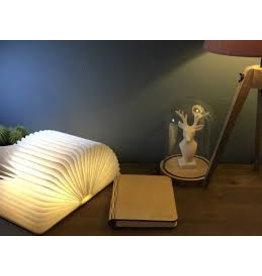 Starbook Boeklamp Lichthouten kaft