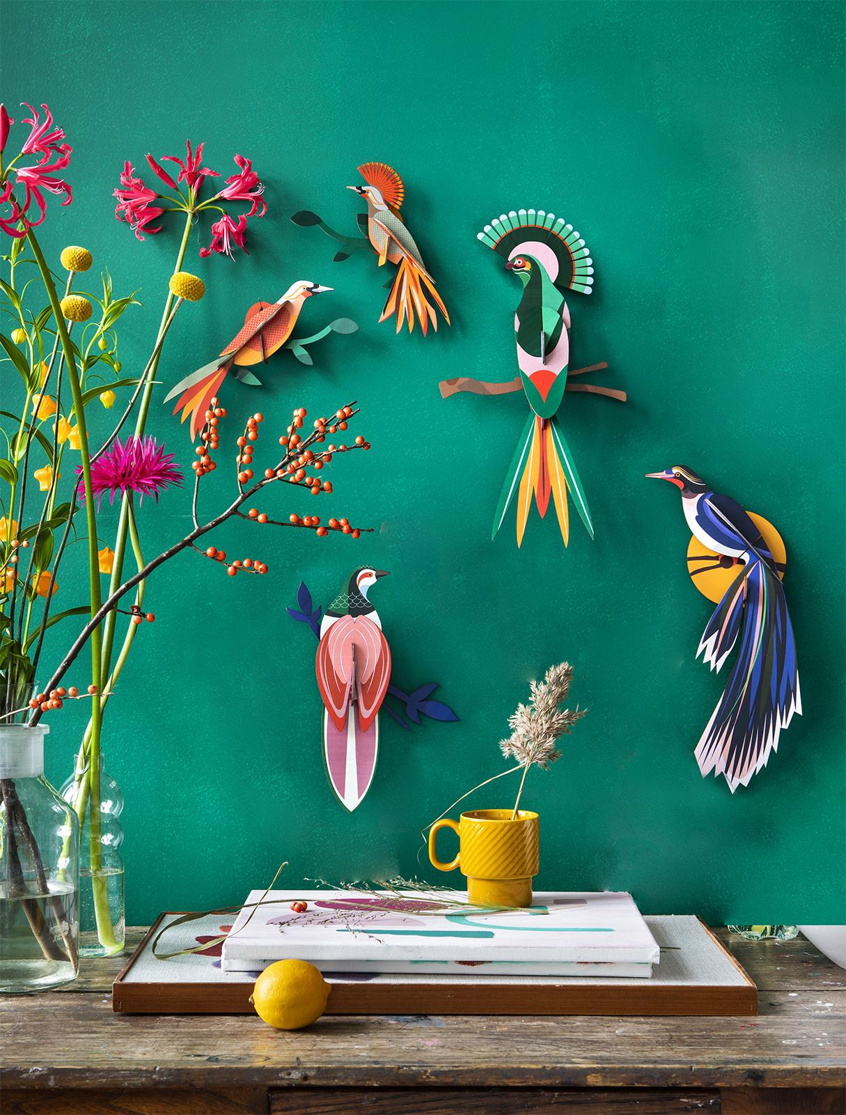 Studio Roof 3D Wanddekoration Paradise Bird Rani