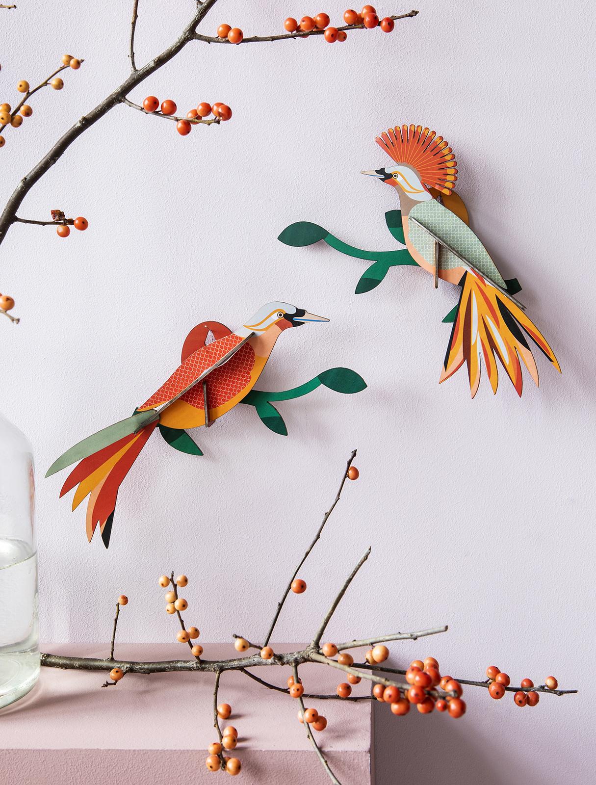 Studio Roof 3D Wanddekoration Paradise Bird Obi