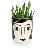 Kitsch Kitchen Flower Pot  Mrs. Schultz