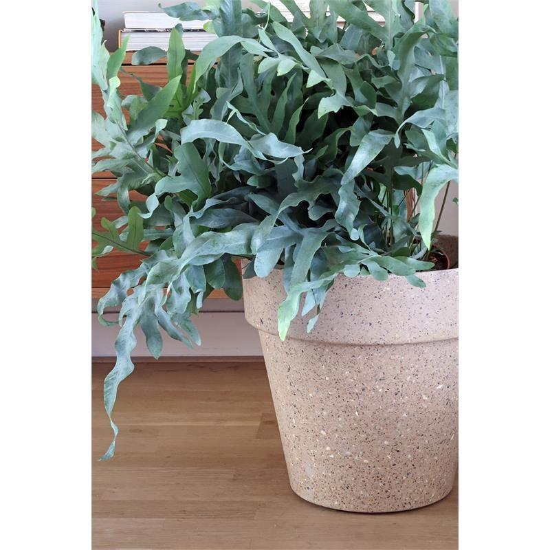 Zuperzozial Flower Pot  Jungle Fever XXL brown