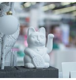 Donkey Products Lucky Cat white