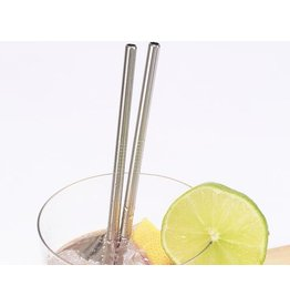 Kikkerland Stainless steel straws with brush
