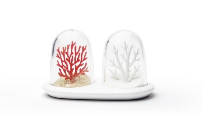 Qualy Salt and Pepper Set Coral Bleaching