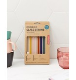 Kikkerland Glass straws with brush