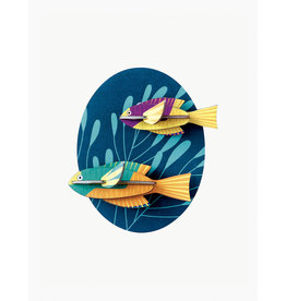 Studio Roof 3D Wall Decoration Spanish Hogfishes