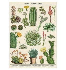 Cavallini & Co Vintage School Poster Cacti & Succulents