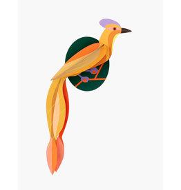 Studio Roof 3D Wall Decoration Paradise Bird Olango