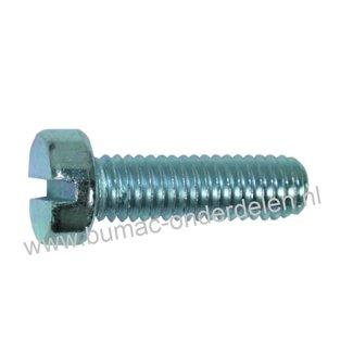 Cilinderschroef M8 x 20 met zaaggleuf metrisch verzinkt, DIN 84, Klasse 4.8, Cilinderkopschroef M8x1.25x20