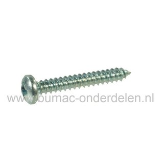 Verzinkte Schroef 2,9x16 mm  met Kruiskop, Kruiskop maat 1, DIN 7981C, 2,9 x 16 mm  Cilinderkopschroef