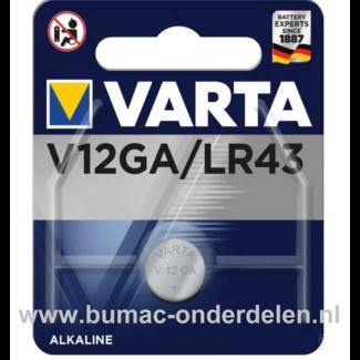 Varta Alkaline V12GA/LR43 Knoopcelbatterij 1,5 Volt De Knoopcelbatterijen zijn zeer betrouwbaar en perfect voor Professioneel en Thuis gebruik De Knoopcelbatterijen komen voor op horloges, elektronisch speelgoed, zaklampen, weegschalen en andere alledaags